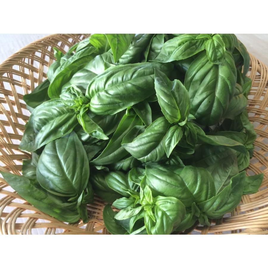 フレッシュグループ淡路島の香るハーブと彩り野菜セット 季節の12〜14種の厳選こだわり詰合わせ|freshherb|04
