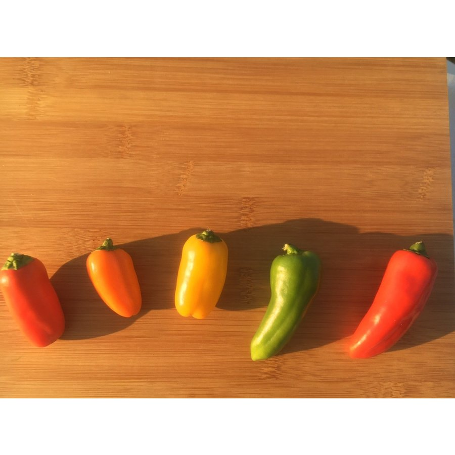 フレッシュグループ淡路島の香るハーブと彩り野菜セット 季節の12〜14種の厳選こだわり詰合わせ|freshherb|09