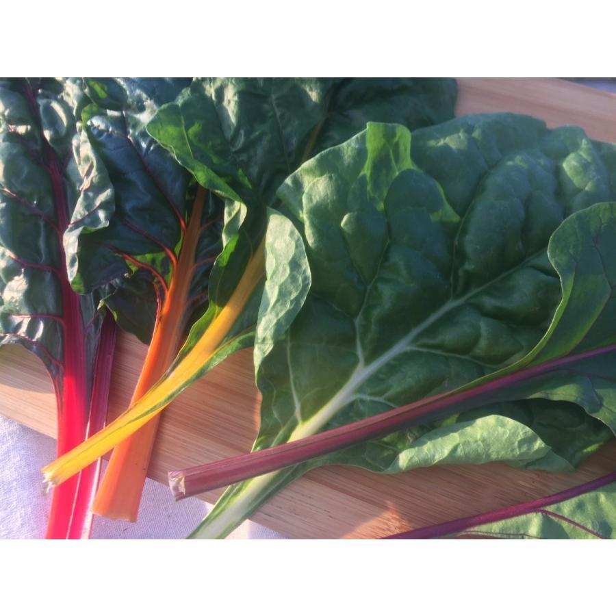 フレッシュグループ淡路島の香るハーブと彩り野菜セット 季節の12〜14種の厳選こだわり詰合わせ|freshherb|10