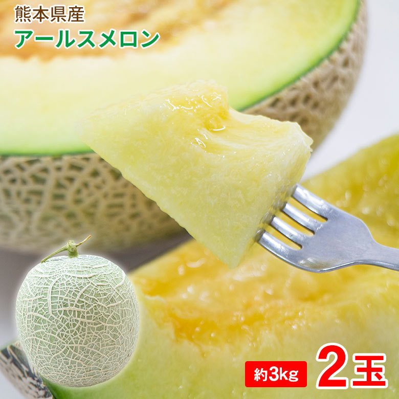 送料無料 アールスメロン 熊本県産 熊本 熊本メロン マスクメロン クラウンメロン メロン メロン 約 3kg 2玉 メロン ギフト fruit27