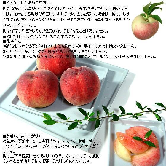 桃 山梨 お中元ギフト フルーツ 特産品 白鳳 白桃 黄金桃 硬い桃 特秀 1kg 送料無料 一部地域を除く|fruits-line|14