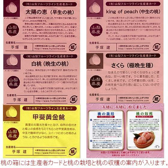 桃 山梨 お中元ギフト フルーツ 特産品 白鳳 白桃 黄金桃 硬い桃 特秀 1kg 送料無料 一部地域を除く|fruits-line|20