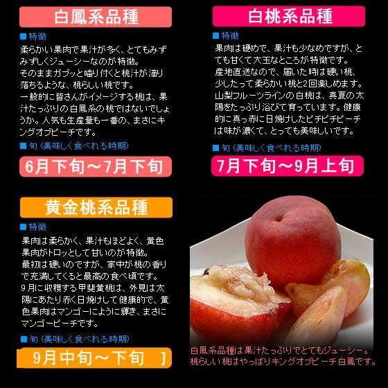 桃 山梨 お中元ギフト フルーツ 特産品 白鳳 白桃 黄金桃 硬い桃 特秀 1kg 送料無料 一部地域を除く|fruits-line|08