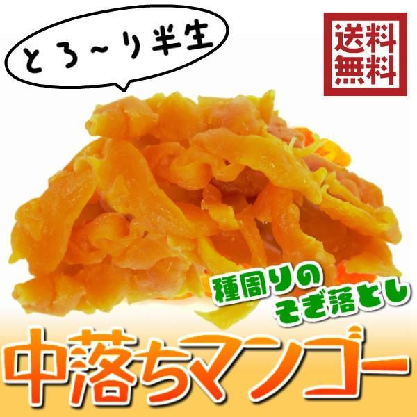 ドライーマンゴー 半生ドライフルーツ 1kg 中落ちのジューシーマンゴー (中落ちマンゴー1kg)セブ産 送料無料 ソフト 訳あり 1業務用|fs-yokohama