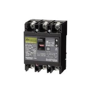 GE102CA 2P 60A F100:【GE-C】漏電ブレーカ(協約形) 極数・素子数:2P2E 定格電流:60A