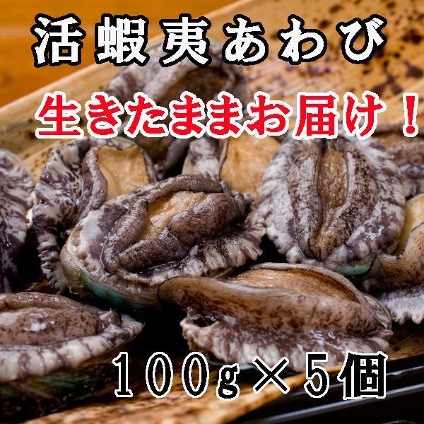 お歳暮 お祝い ギフト お取り寄せグルメ 活蝦夷アワビ Lサイズ 5個入り|fugumaru