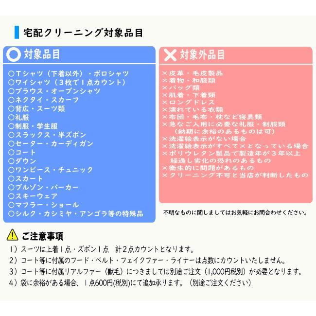 クリーニング 宅配  詰め放題 7点まで Sサイズ集荷バッグ しみ抜き 衣替え 関東〜九州 送料無料|fujicleaning|05