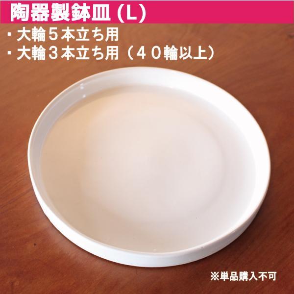 鉢皿 L 受け皿 陶器 直径21cm 高級感ある陶器製【鉢皿のみの購入不可】 fujimino