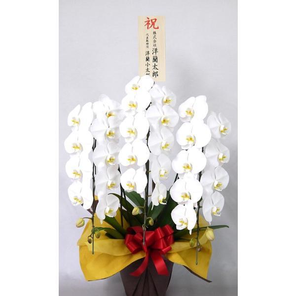 木札(中/お花の上タイプ)会社の各お祝いに目立ち度アップ!単品購入不可|fujimino|03