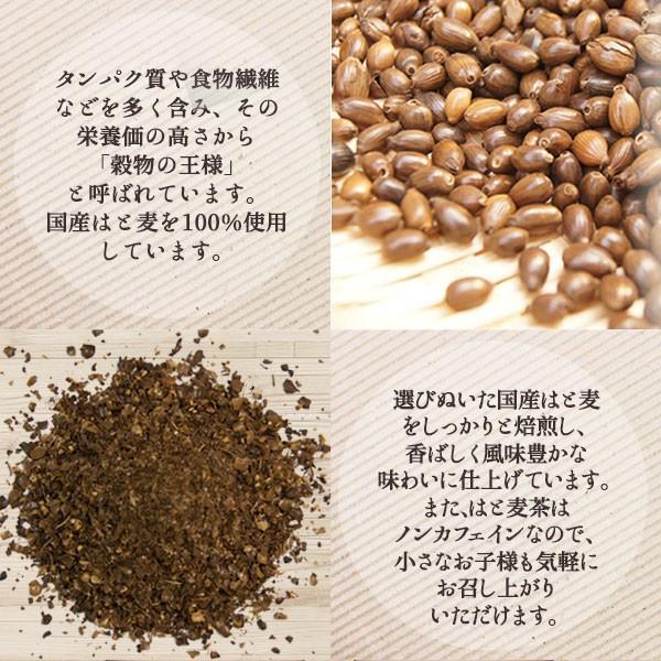 はと麦茶 国産 ハトムギ ティーバッグ 250g(2.5g×100包) マイボトル専用 はとむぎ 麦茶 大容量 ノンカフェイン|fukucha|07
