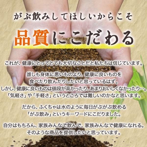はと麦茶 国産 ハトムギ ティーバッグ 250g(2.5g×100包) マイボトル専用 はとむぎ 麦茶 大容量 ノンカフェイン|fukucha|08