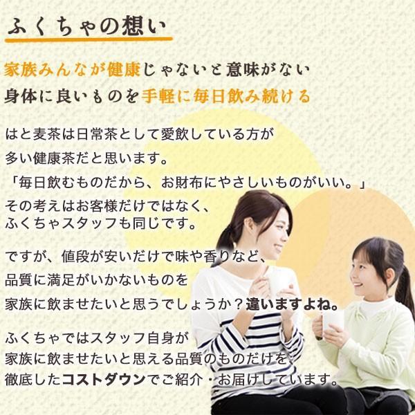はと麦茶 国産 ハトムギ ティーバッグ 250g(2.5g×100包) マイボトル専用 はとむぎ 麦茶 大容量 ノンカフェイン|fukucha|09