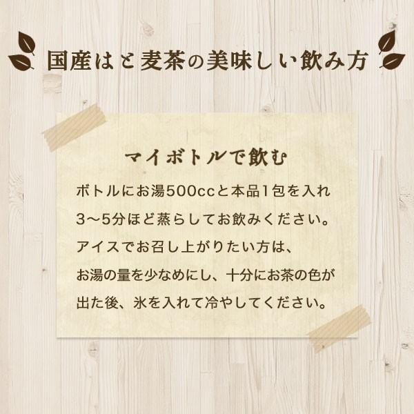 はと麦茶 国産 ハトムギ ティーバッグ 250g(2.5g×100包) マイボトル専用 はとむぎ 麦茶 大容量 ノンカフェイン|fukucha|10