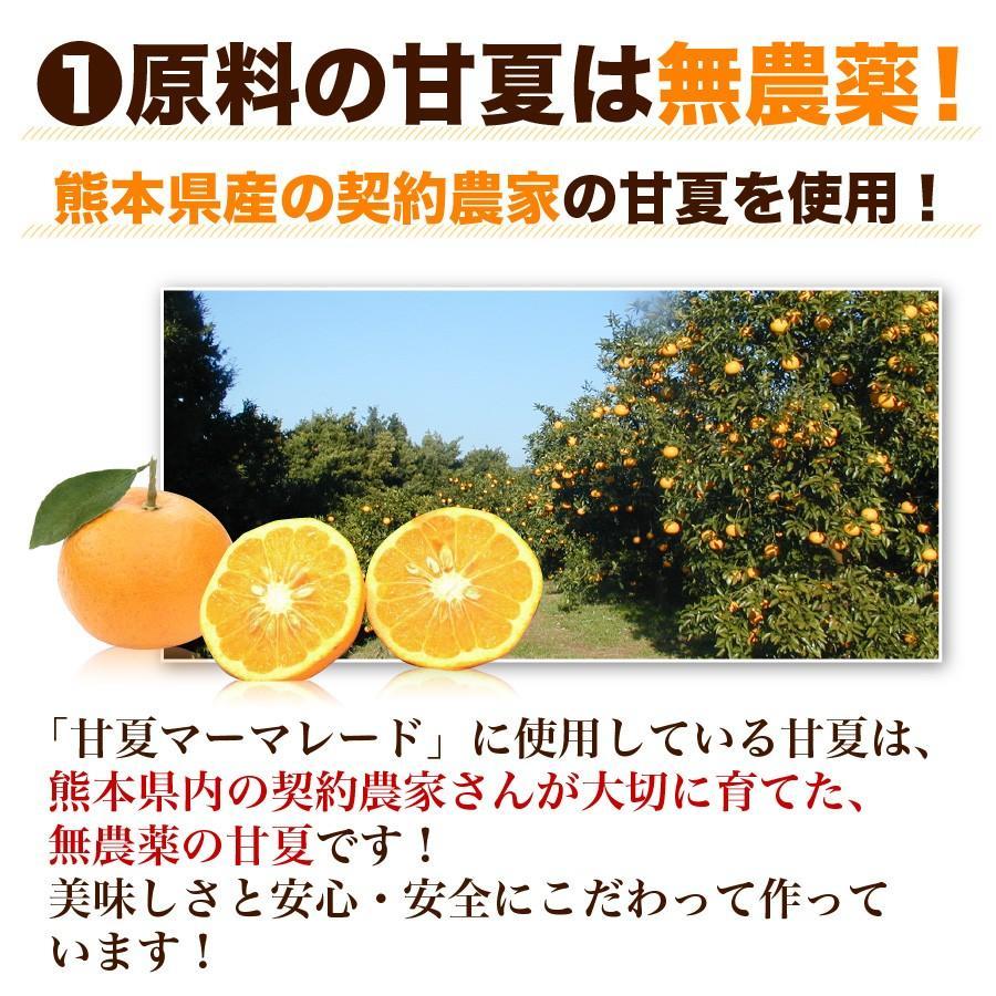 福田農場 九州果実ジャム 甘夏 マーマレード ビッグ 440g 熊本|fukuda-farm|06