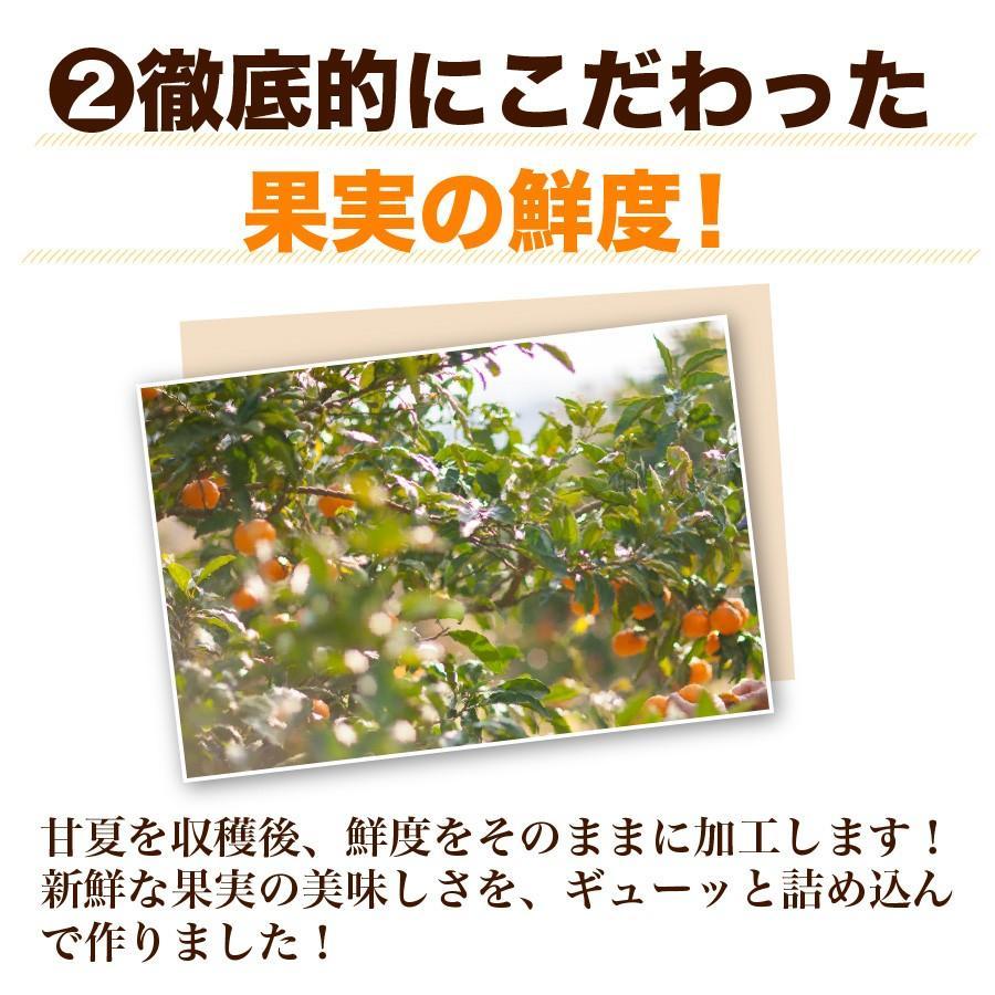福田農場 九州果実ジャム 甘夏 マーマレード ビッグ 440g 熊本|fukuda-farm|07
