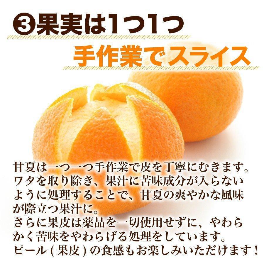福田農場 九州果実ジャム 甘夏 マーマレード ビッグ 440g 熊本|fukuda-farm|08