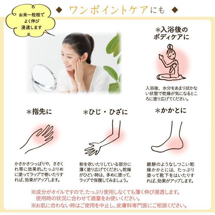 お試し 送料無料 馬柚(馬油) リップクリーム 乾燥対策 天然アロマ 桜島小みかん|fukuda-farm|10