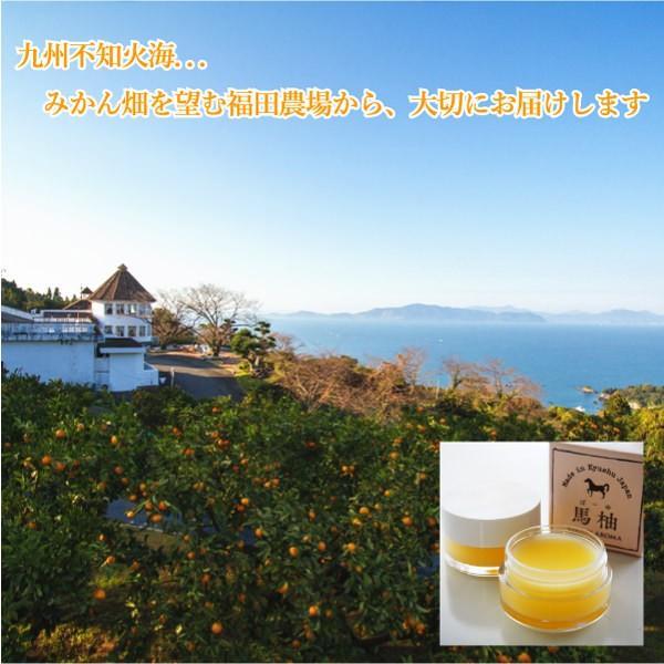 お試し 送料無料 馬柚(馬油) リップクリーム 乾燥対策 天然アロマ 桜島小みかん|fukuda-farm|15