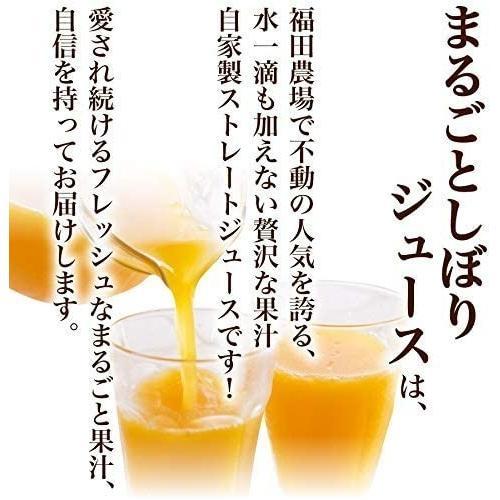 アマビエ みかんジュース ストレート 不知火 デコポン 九州まるごとしぼり 1本180ml 九州 果汁100% fukuda-farm 02