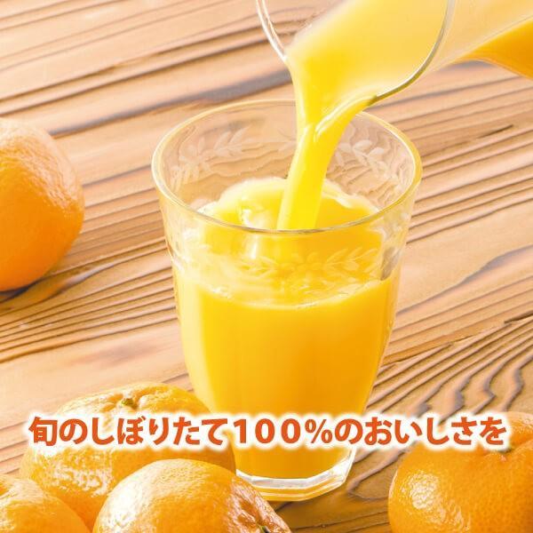 みかんジュース ストレート 九州まるごとしぼり 九州 国産 飲み比べ180ml×10本セット ギフト デコポン 晩柑 fukuda-farm 14