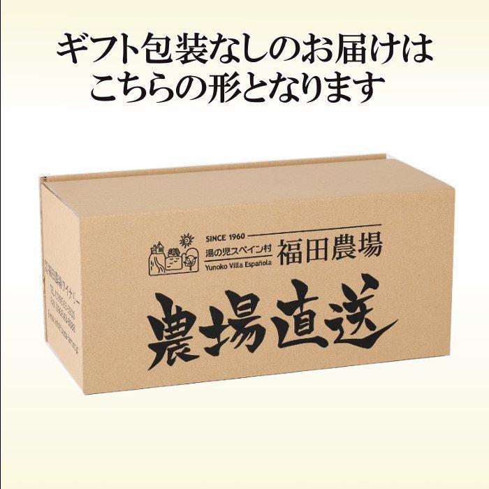 みかんジュース ストレート 九州まるごとしぼり 九州 国産 飲み比べ180ml×10本セット ギフト デコポン 晩柑 fukuda-farm 05