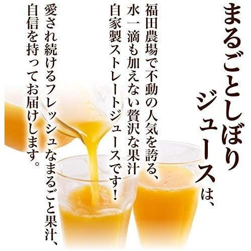 みかんジュース ストレート 九州まるごとしぼり 九州 国産 飲み比べ180ml×10本セット ギフト デコポン 晩柑 fukuda-farm 06