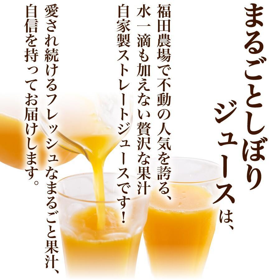 みかんジュース ストレート 九州まるごとしぼり 九州 国産 飲み比べ180ml×10本セット ギフト デコポン 晩柑 fukuda-farm 08