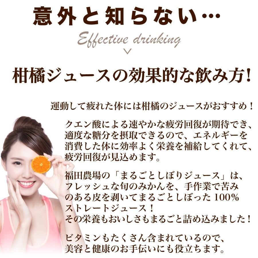みかんジュース ストレート 飲み比べ5種180ml×10本セット ギフト 九州まるごとしぼり 九州 国産 fukuda-farm 07