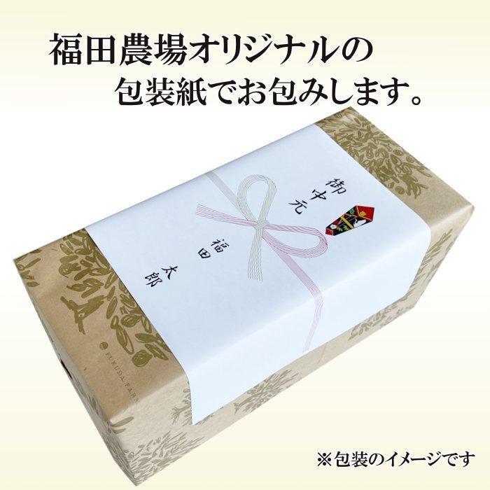 みかんジュース ストレート 飲み比べ5種180ml×10本セット ギフト 九州まるごとしぼり 九州 国産 fukuda-farm 11
