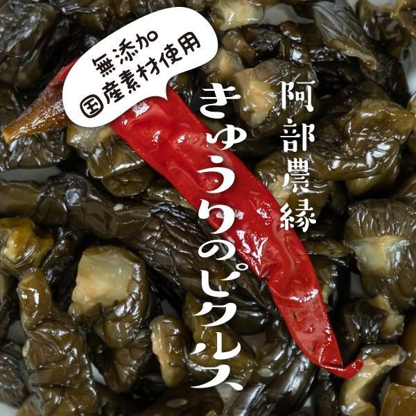 きゅうりのピクルス 150g×5個セット 国産 きゅうり 農家のお母さん達の手作りピクルス 酢漬 阿部農縁 ふくしまプライド。体感キャンペーン(その他) fukufukugenki 03