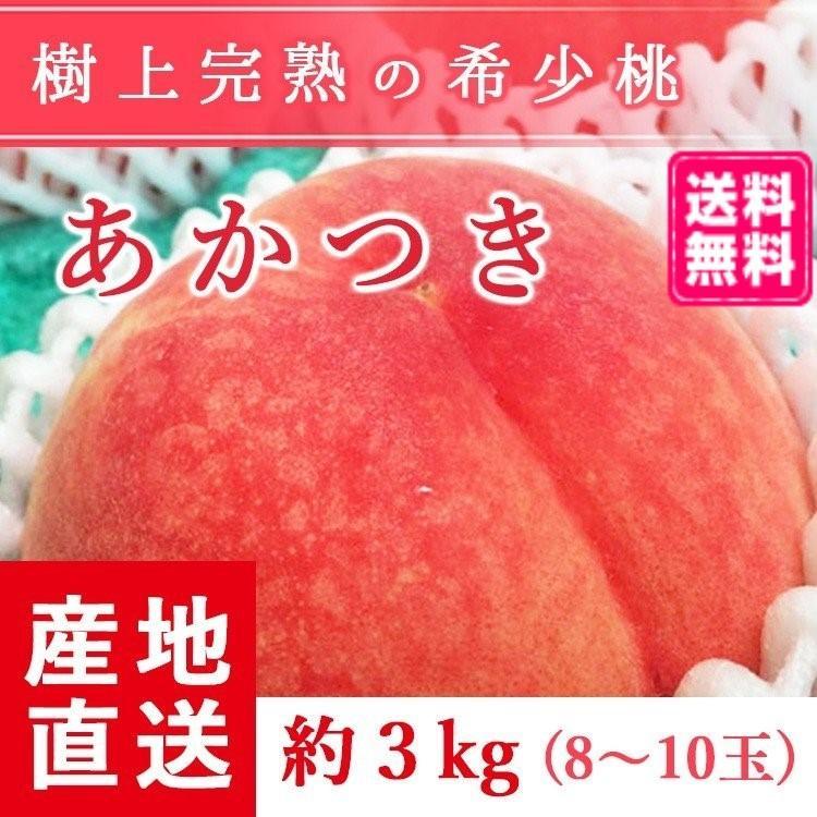 【送料無料 8月上旬発送予約注文】福島県産の桃 もぎたて完熟あかつき 約3kg(8〜10玉) ギフト・贈答用に 阿部農縁 もも モモ|fukufukugenki
