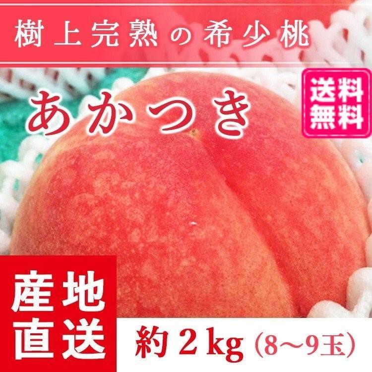 【送料無料 8月上旬発送予約注文】福島県産の桃 もぎたて完熟あかつき 約2kg(8〜9玉) ギフト・贈答用に 阿部農縁 もも モモ|fukufukugenki