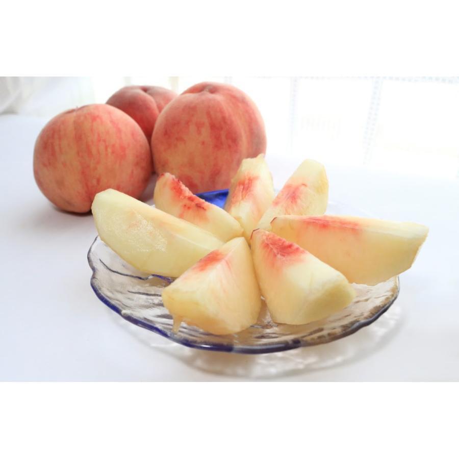 【送料無料 8月上旬発送予約注文】福島県産の桃 もぎたて完熟あかつき 約3kg(11玉〜) ギフト・贈答用に 阿部農縁 もも モモ fukufukugenki 02