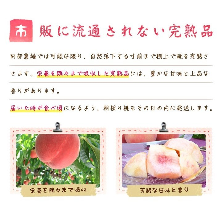 【送料無料 8月下旬〜9月中旬発送予約注文】福島県産の桃 もぎたて完熟川中島 約2kg(6〜7玉) ギフト・贈答用に 阿部農縁 もも モモ|fukufukugenki|04