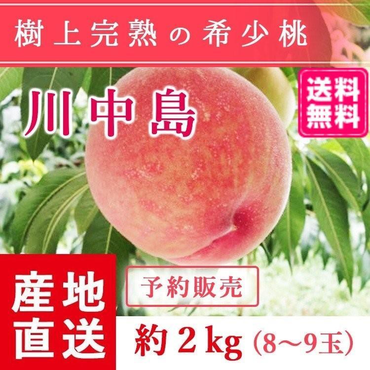【送料無料 8月下旬〜9月中旬発送予約注文】福島県産の桃 もぎたて完熟川中島 約2kg(8〜9玉) ギフト・贈答用に 阿部農縁 もも モモ|fukufukugenki