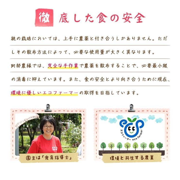 【送料無料 8月下旬〜9月中旬発送予約注文】福島県産の桃 もぎたて完熟川中島 約2kg(8〜9玉) ギフト・贈答用に 阿部農縁 もも モモ|fukufukugenki|06