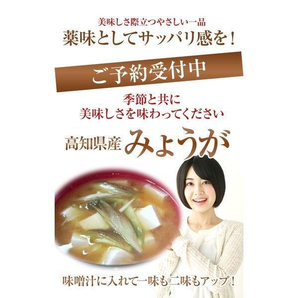 みょうが 約150g入り  高知県産  かほり優しい!【送料込】お試し!|fukui|02
