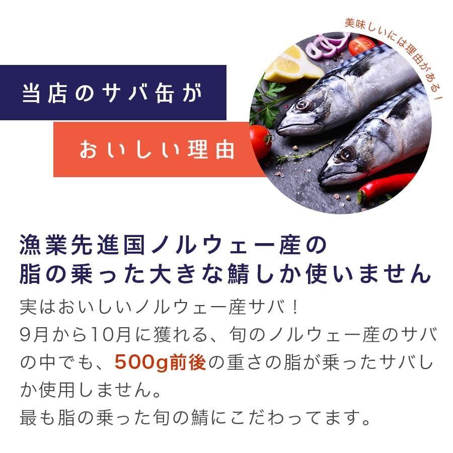 鯖缶 味付【唐辛子入】24缶 缶詰 高級 サバ缶 非常食 おすすめ ノルウェー産 福井缶詰 fukuican 08