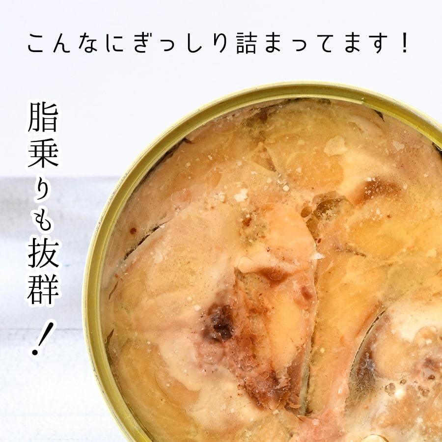 鯖缶 水煮 12缶 缶詰 高級 サバ缶 おつまみ 家飲み おすすめ ノルウェー産 福井缶詰 fukuican 04
