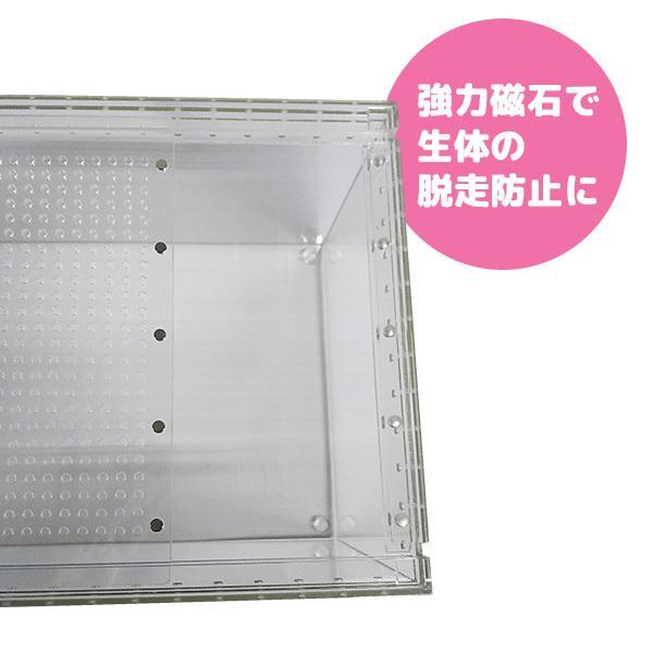 アクリルケージ (レプタイル用ボックス) S クリア TOP-AC-S2 TOPCREATE(トップクリエイト)|fukumomoland|06