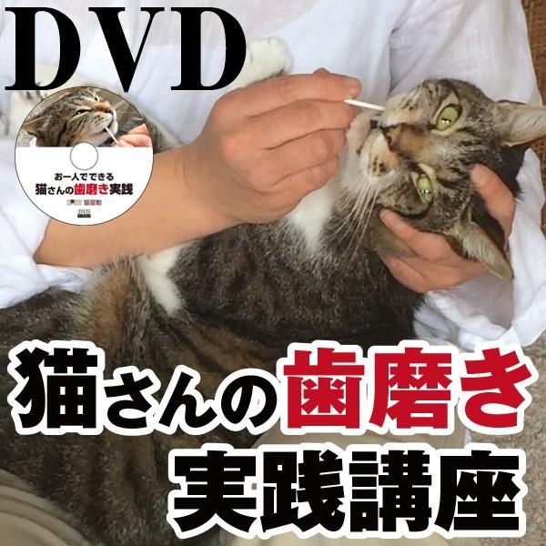 DVD 猫さんの歯磨き実践講座|fukunekohonpo