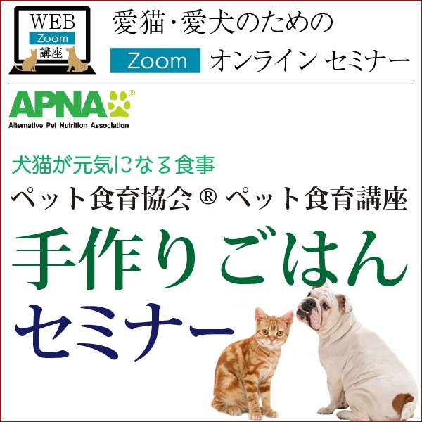 愛猫・愛犬のための手作りごはん Zoomセミナー|fukunekohonpo