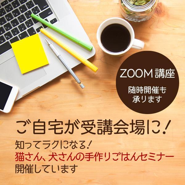 愛猫・愛犬のための手作りごはん Zoomセミナー|fukunekohonpo|02