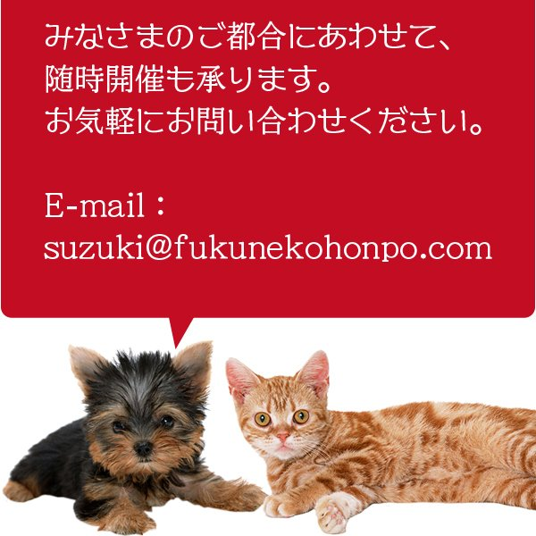 愛猫・愛犬のための手作りごはん Zoomセミナー|fukunekohonpo|20