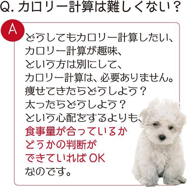 愛猫・愛犬のための手作りごはん Zoomセミナー|fukunekohonpo|03