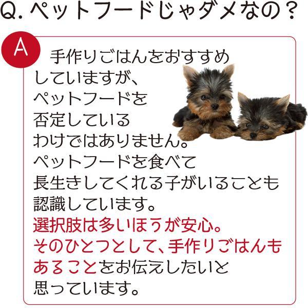 愛猫・愛犬のための手作りごはん Zoomセミナー|fukunekohonpo|04