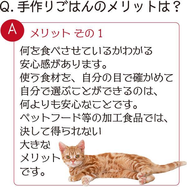 愛猫・愛犬のための手作りごはん Zoomセミナー|fukunekohonpo|05