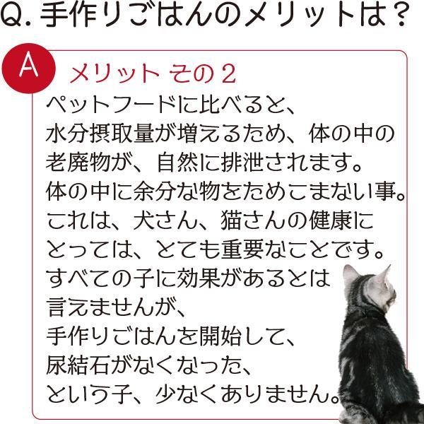 愛猫・愛犬のための手作りごはん Zoomセミナー|fukunekohonpo|06