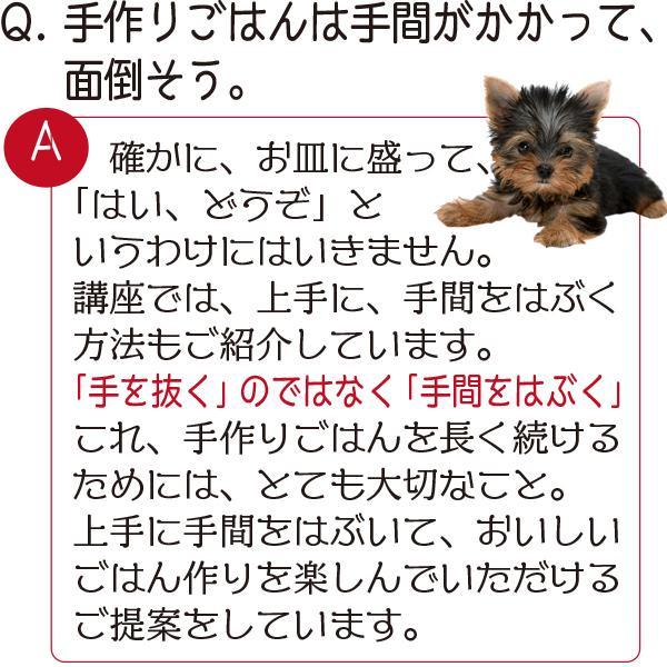 愛猫・愛犬のための手作りごはん Zoomセミナー|fukunekohonpo|07
