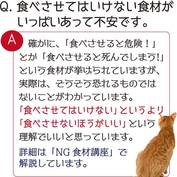 愛猫・愛犬のための手作りごはん Zoomセミナー|fukunekohonpo|08